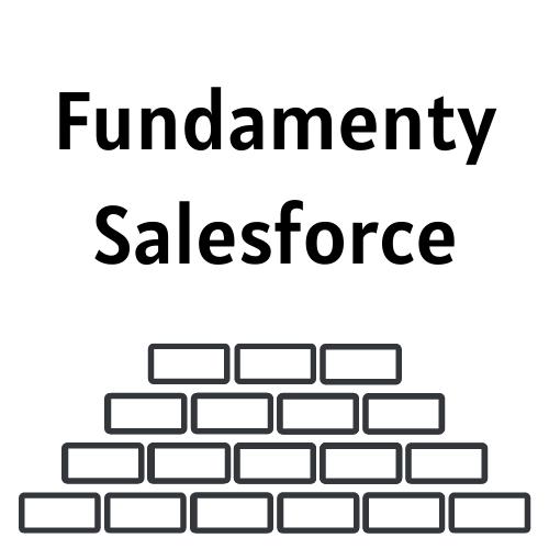 Fundamenty Developera Salesforce
